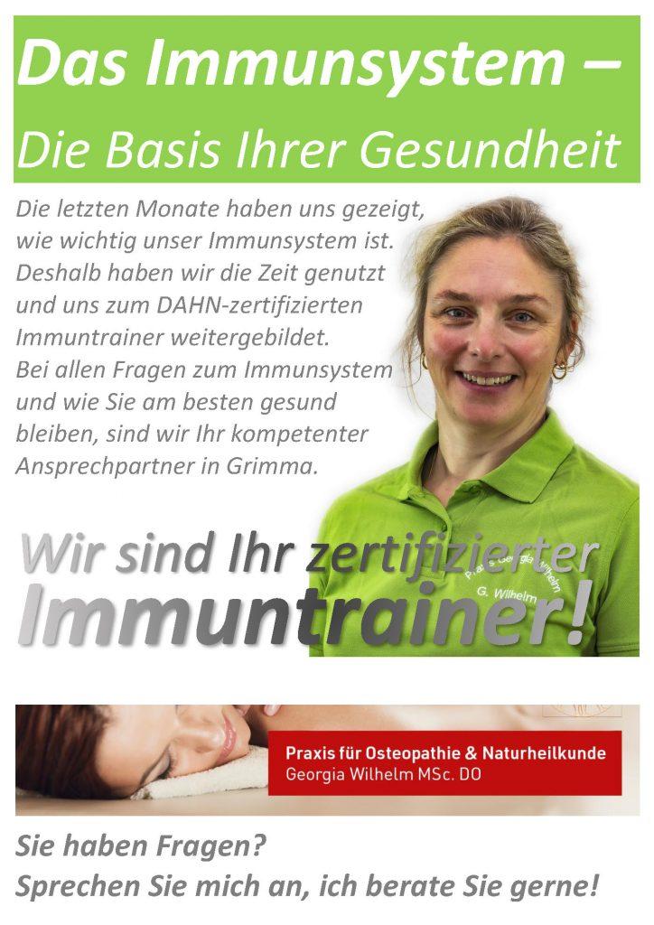 Flyer-Immuntrainer